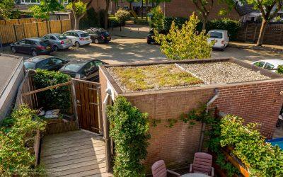 Bewoners vertellen: duurzamer wonen in de Oosterflank !